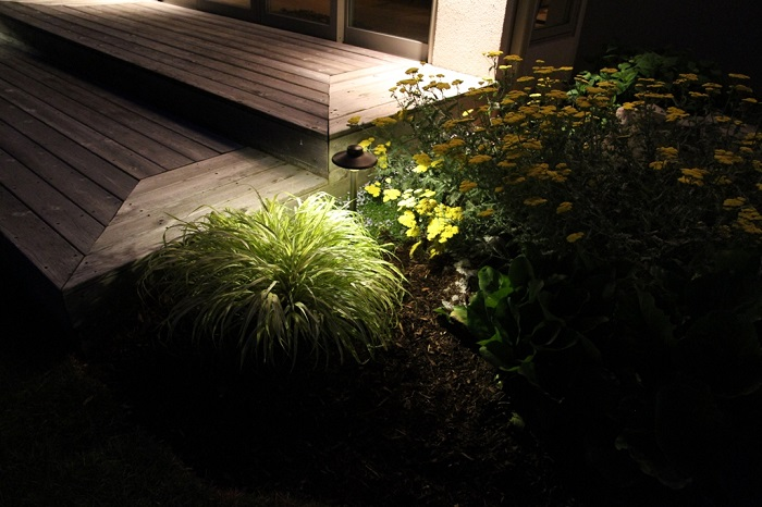 Outdoor Landscape Lighting Tips For Your Best Pathway